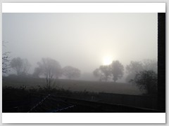 December Sunrise in Fog